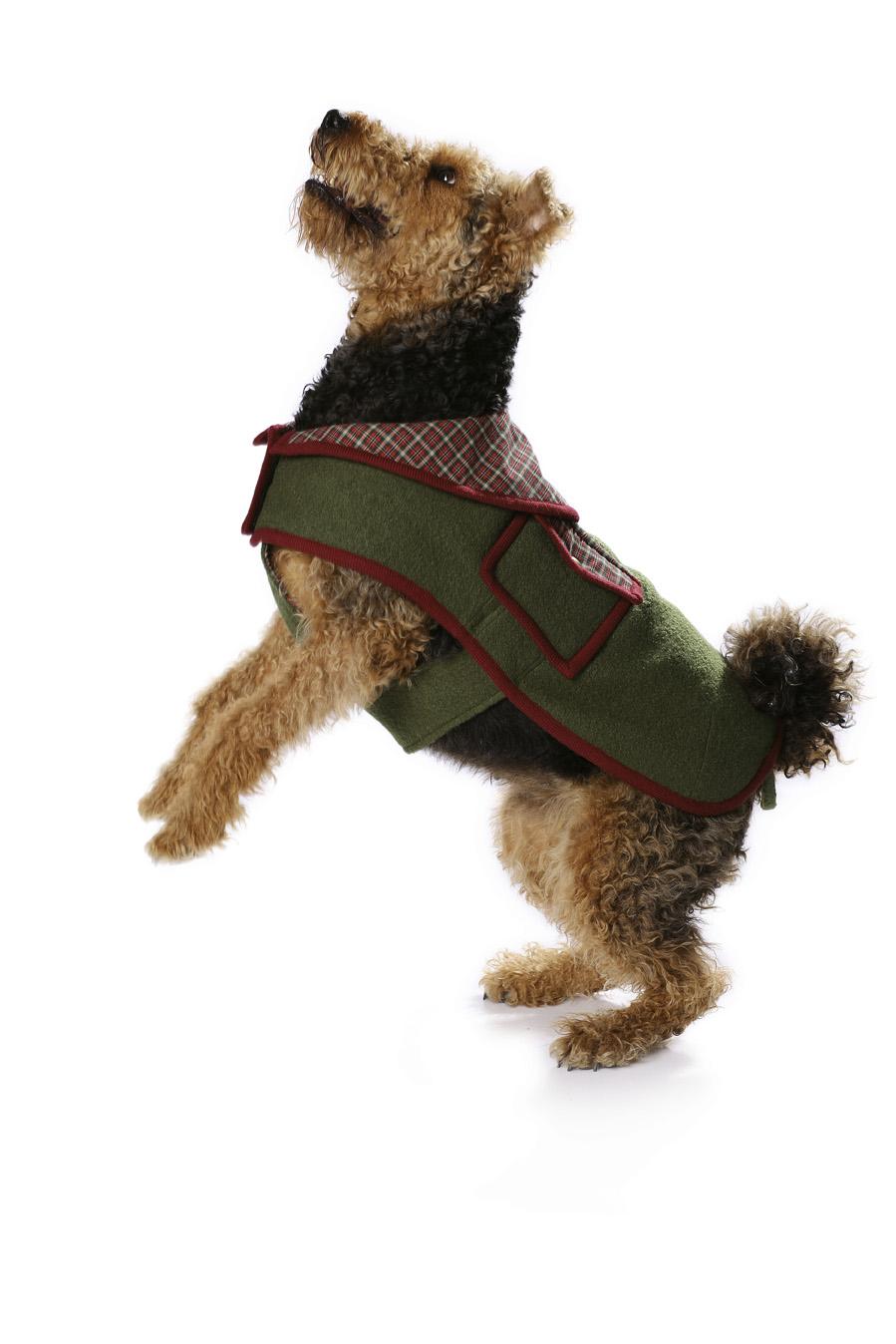 Nice Schnittmuster Für Hundekleidung Ensign - Decke Stricken Muster ...