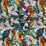 Baumwolljersey Tropical Birds
